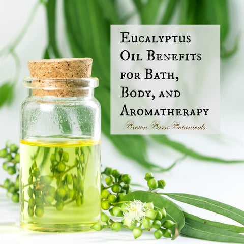 Eucalyptus Oil Benefits for Bath, Body, and Aromatherapy