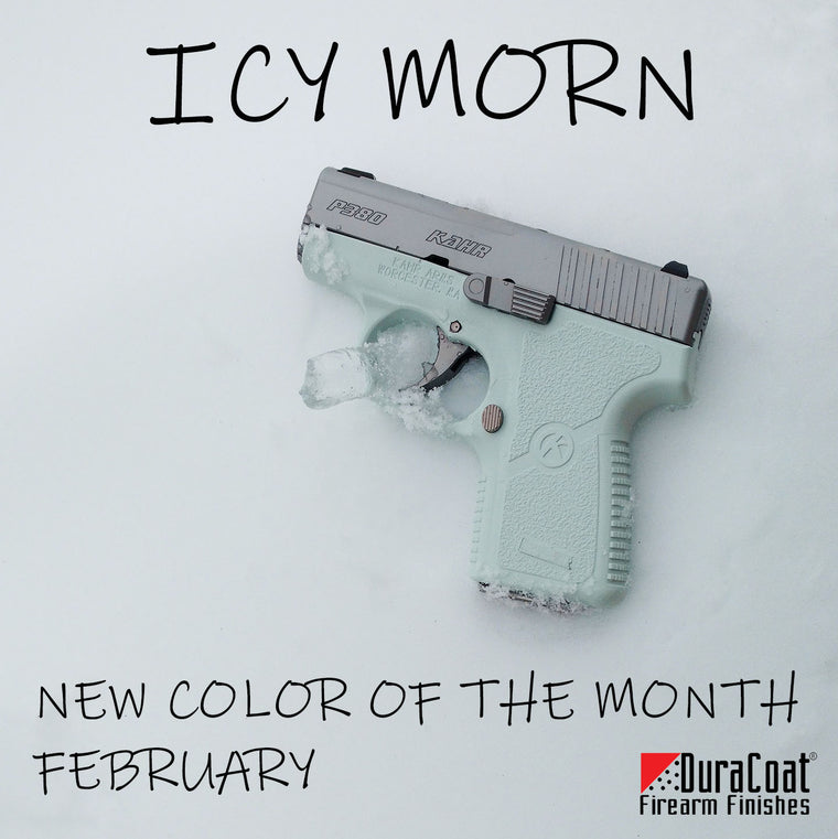 Icy Morn - FEBRUARY 2019 New Color of the Month
