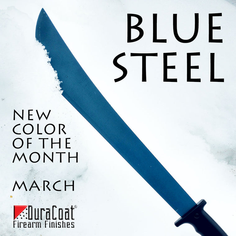 Blue Steel - MARCH 2019 New Color of the Month