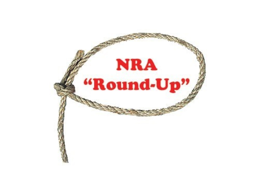 Donate to the NRA