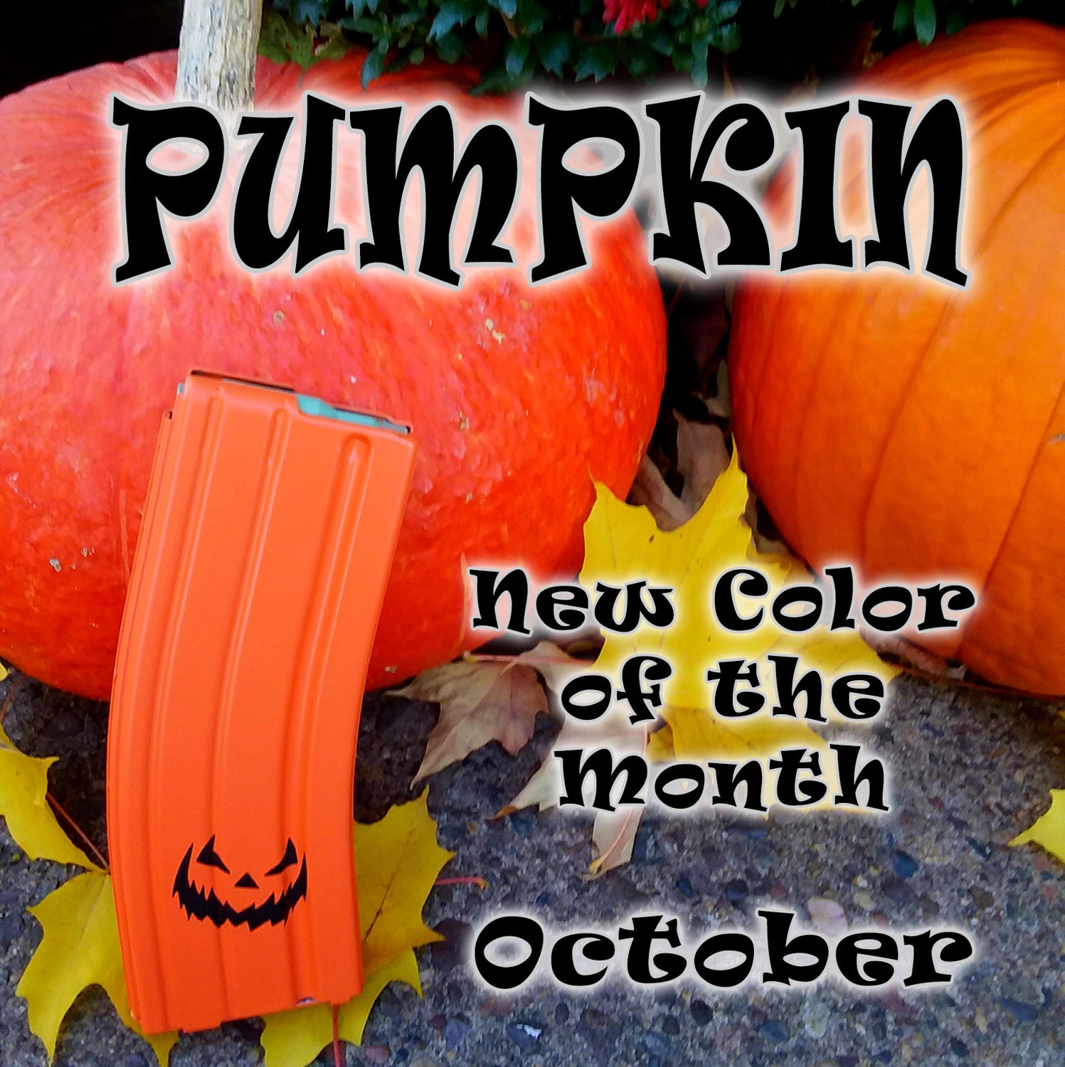 Pumpkin - OCTOBER New Color of the Month