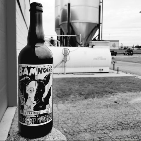 Jolly Pumpkin Bam Noire Sour Dark Farmhouse Ale 375mL