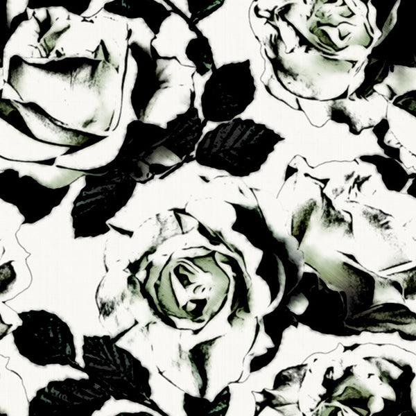 Black and White Roses - Canvas Print