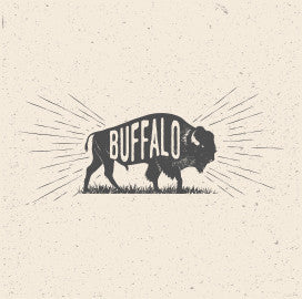 Buffalo - Canvas Print