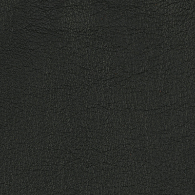 Tango-Tapestry[Buckeye Fabrics Leather]