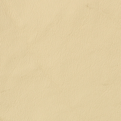 Tango-Bone[Buckeye Fabrics Leather]