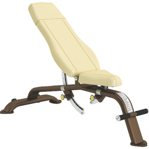 Cybex Adjustable -10º to 80º Bench