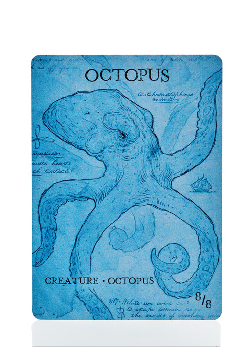 Octopus Token (Pack of 6)