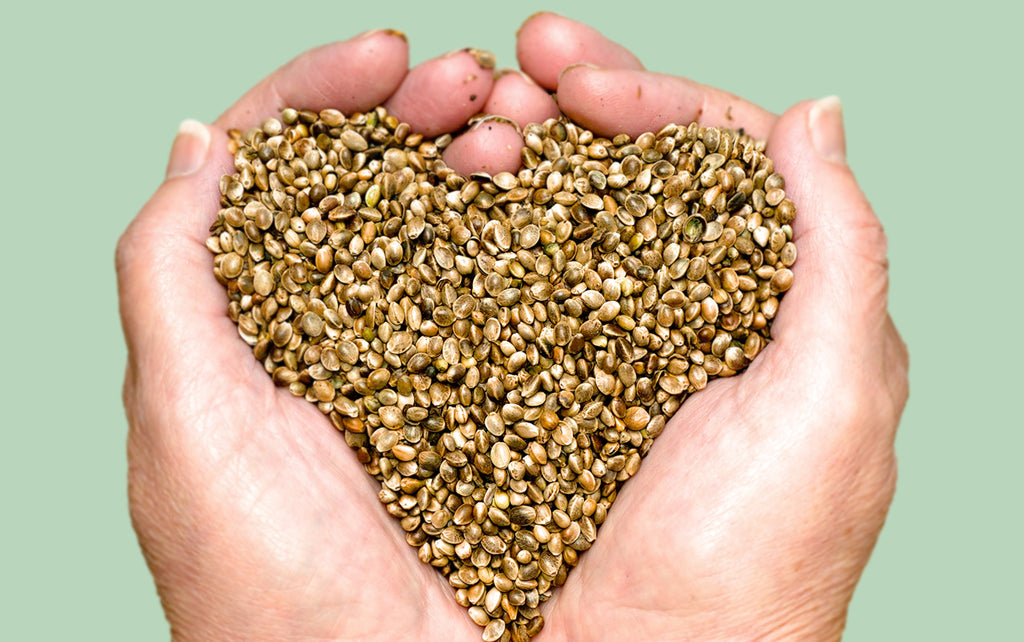 Reap the Beauty Benefits of Hemp Seed