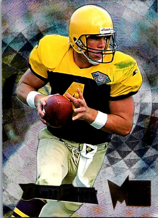 1995 Fleer Metal Silver Flasher Brett Favre Green Bay Packers