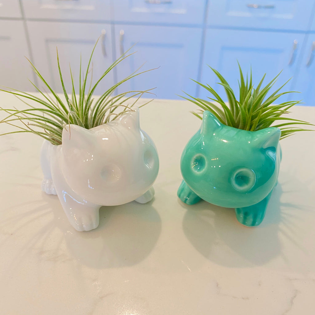 Bulbasaur Planter <br> (Includes Drainage Hole For Non Air Plants)