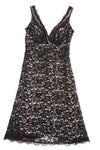 USED White House Black Market Women's Dress 4 Black & Cream