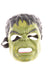 Boy's Hulk Halloween Mask By Hasbro