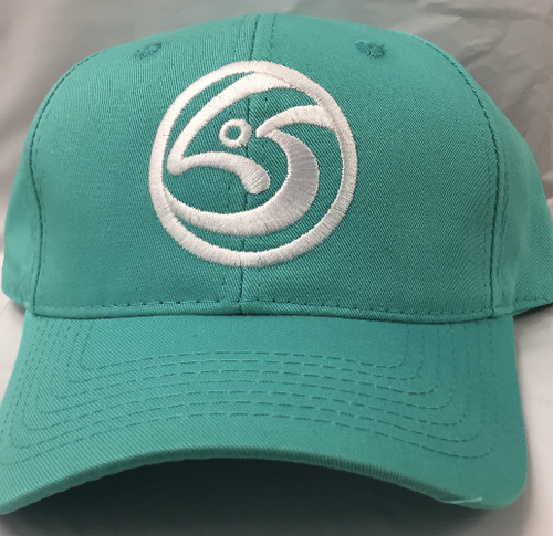 Blue Leftover Salmon Logo Baseball Cap