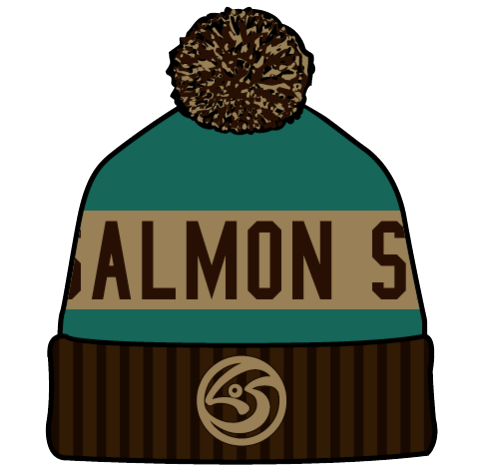 Custom Embroidered Winter Beanie (Teal, Brown)