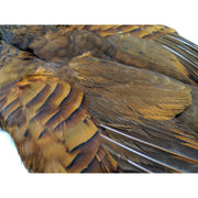 French Partridge Skins - Chinook Wind Outfitters