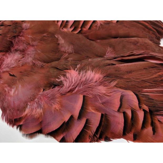 French Partridge Skins