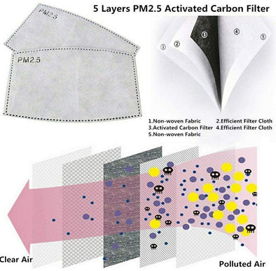 White Mask- Double Layer Washable Mask w/ PM2.5 Filter