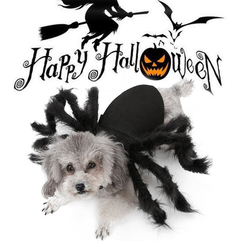 Image of Spider Wing Clothes For Puppies, Cats Halloween Pet Costumes Fancy Dress Up Costume