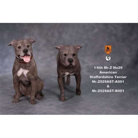 1:6 American Staffordshire Terrier Dog Standing / Sitting Figure Mr Z  Series 29 (LAST CHANCE)