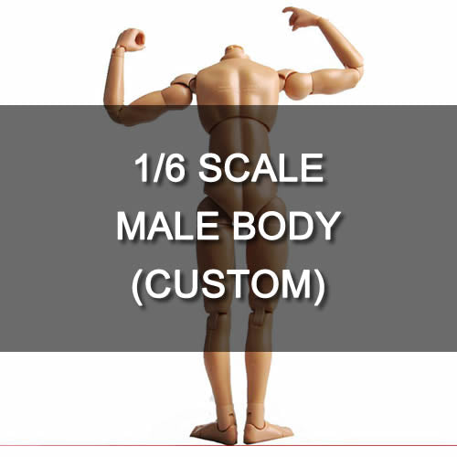 1:6 Standard Male Narrow Shoulder Body for Custom Figure