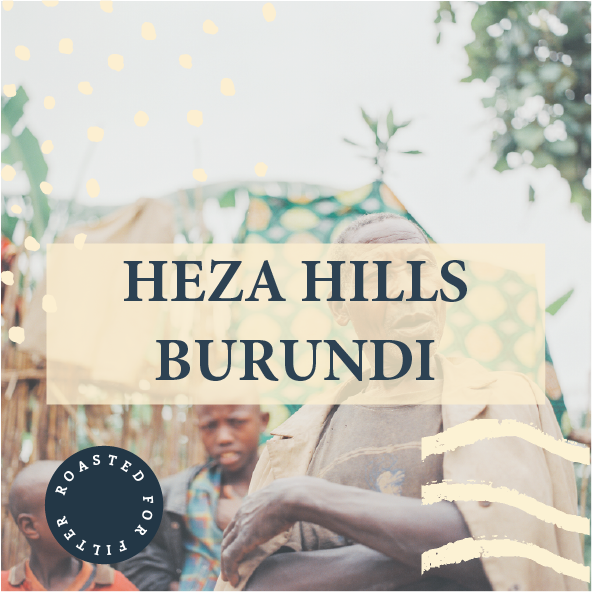 Heza hills burundi filter roast common man coffee roasters