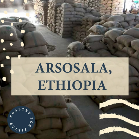 Arsosala, Ethiopia - Filter Roast