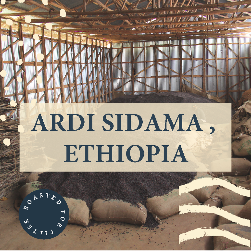 Ardi, Ethiopia - Filter Roast