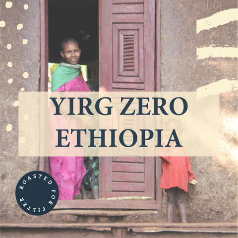 Yirgzero, Ethiopia - Filter Roast