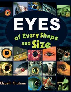 Eyes Of Every Shape And Size