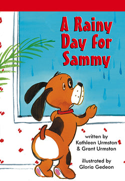 Rainy Day For Sammy, A