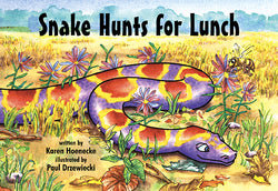Snake Hunts For Lunch
