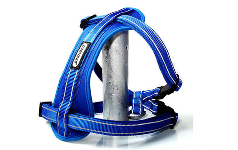 Dogness Reflective Dog Harness- Large - Blue