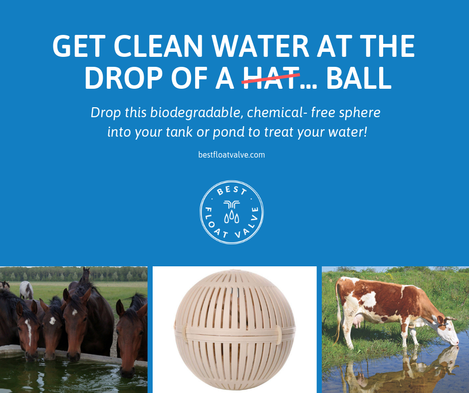 Clean Water for Them, Easy and Cost-Effective for You