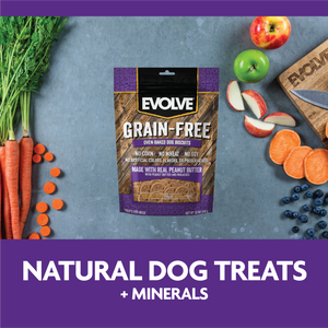 Evolve Grain Free Biscuits Mantequilla de Mani - Galletas y Snacks para Perros