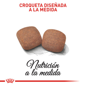 Royal Canin Giant Adult - Alimento para Perros