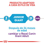 Royal Canin Giant Junior - Alimento para Perros