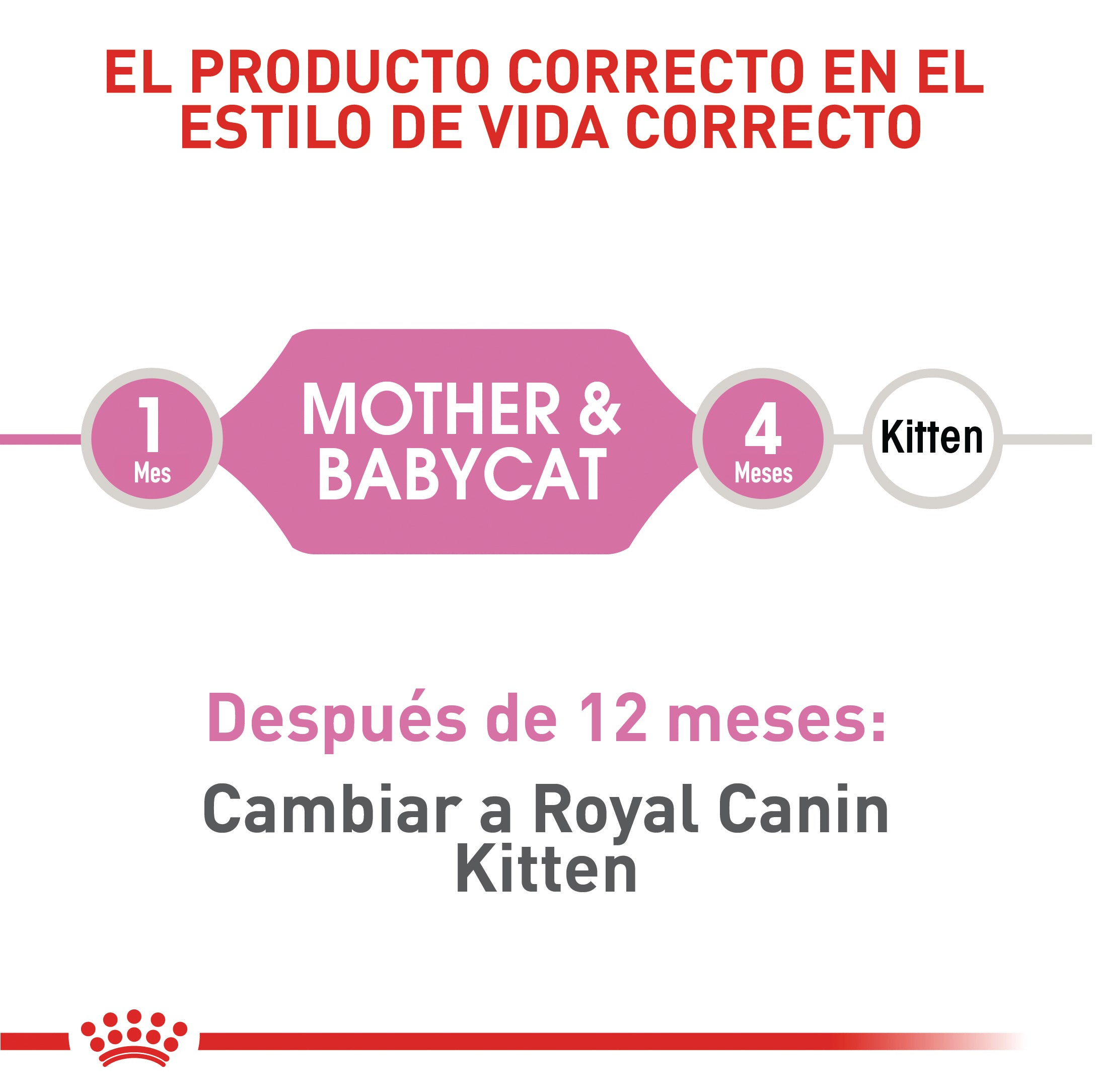 Royal Canin Mother and Baby Cat - Alimento para Gatos