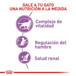 Royal Canin Sterilised 7+ - Alimento para Gatos