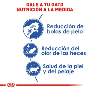 Royal Canin Indoor Adult - Alimento para Gatos