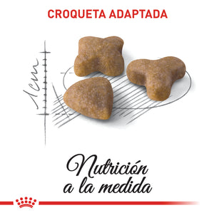 Royal Canin Sensible - Alimento para Gatos