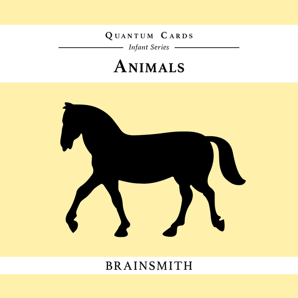 Animals - Quantum Cards for Infants
