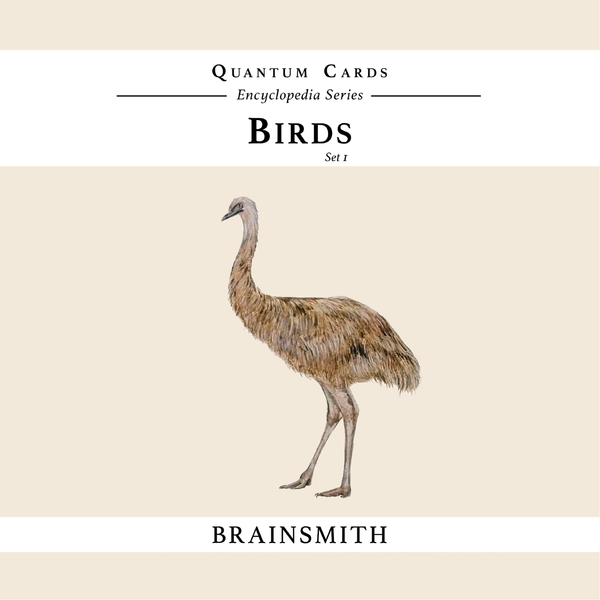 Emu - Birds flash cards