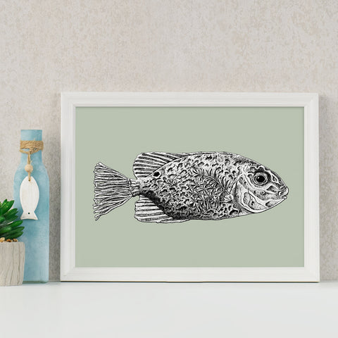 Seagrass Fish Art Print Philippine