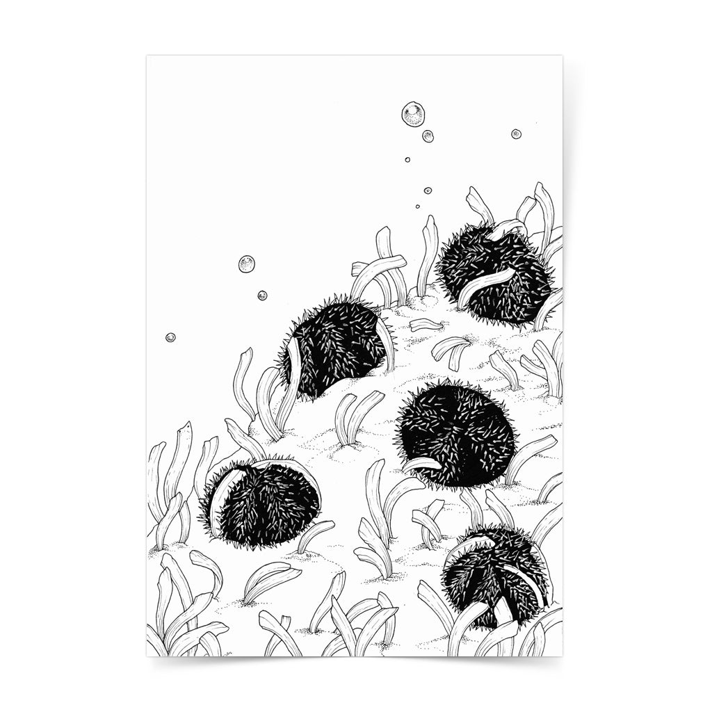 seagrass protect ocean philippines sea original copy dugong art pen and ink drawing artwork underwater space coral black and white wall decor framed artist proof limited edition