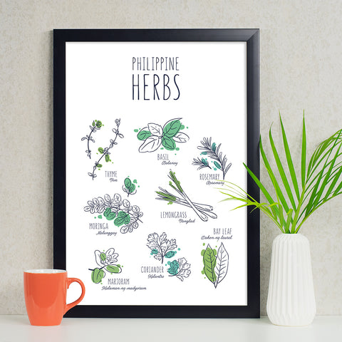 illustrated art kitchen poster philippine herbs rosemary malunggay basil coriander thyme bay leaf Philippine