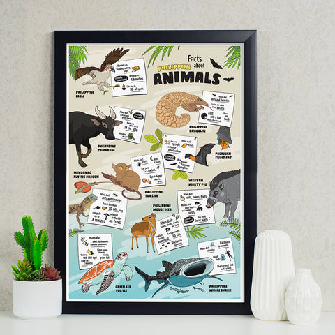 Facts About Philippine Animals Poster Philippine