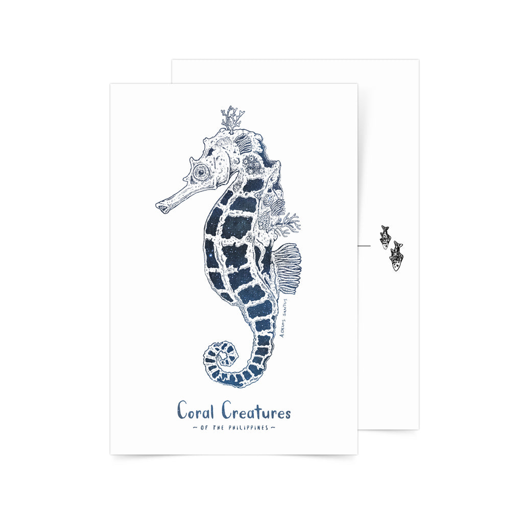 «Coral Seahorse» Postcard Philippines gift