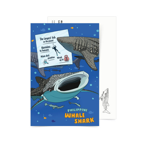 art postcard whale shark postcrossing Philippine