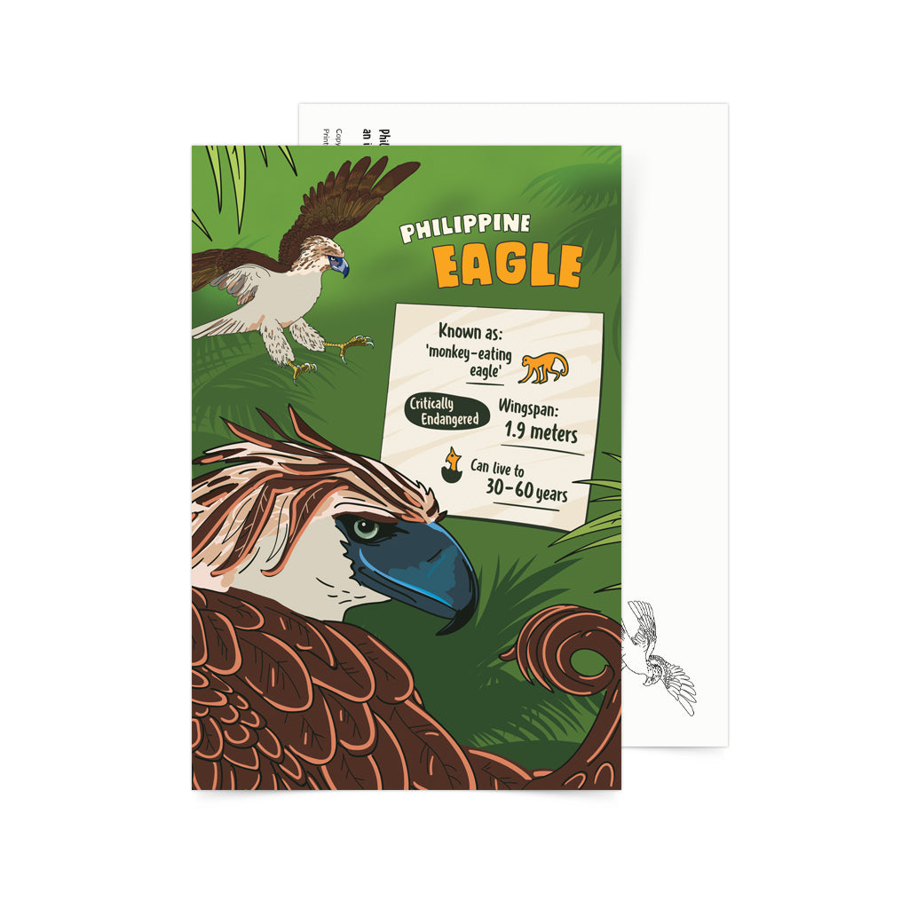 Facts About Philippine Eagle Postcard